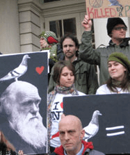 Pigeon rights rally