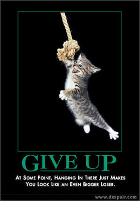 Give Up poster kitten